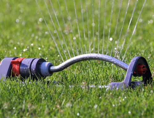 Lawn Sprinkler System Problems Happen