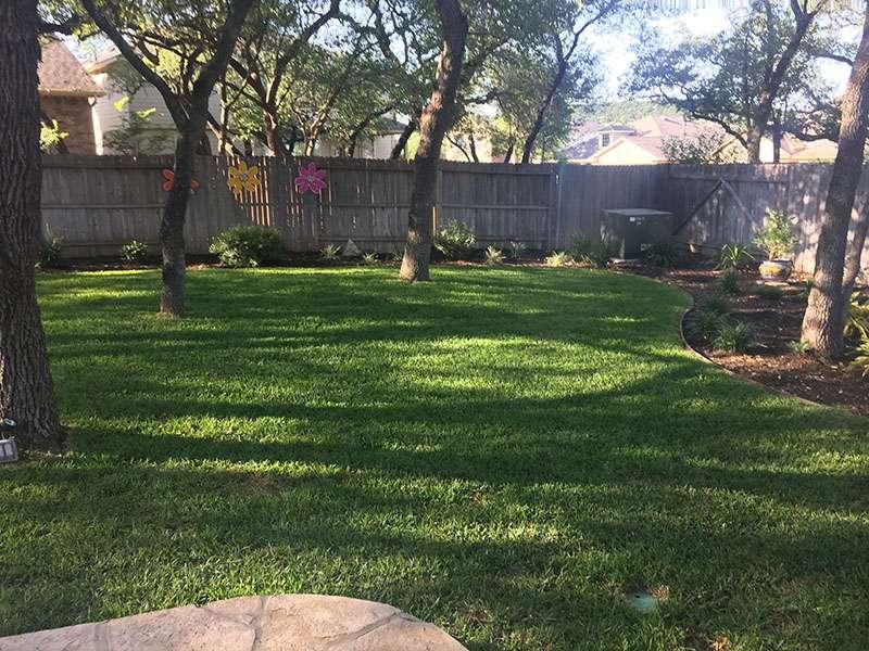 Plant And Tree Installation Services San Antonio Aais